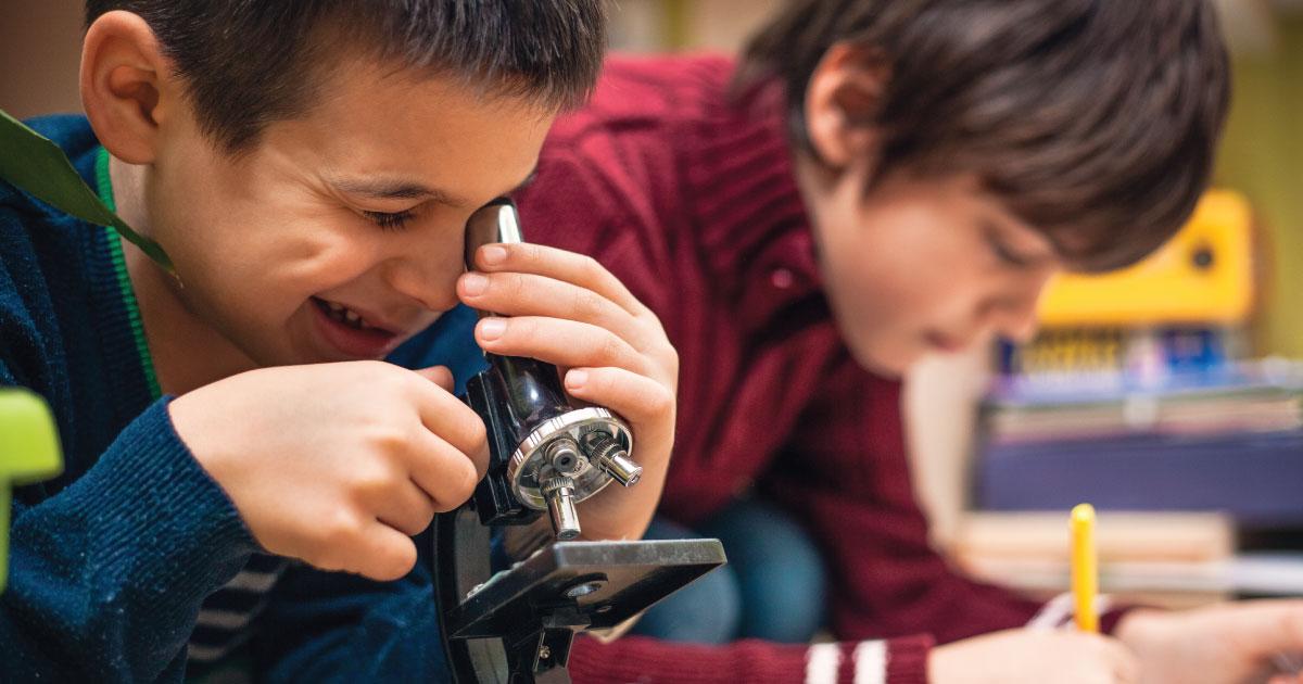 Education Schools Economy Future